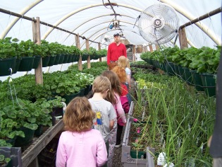 The school kids in one of my smaller greenhouses.