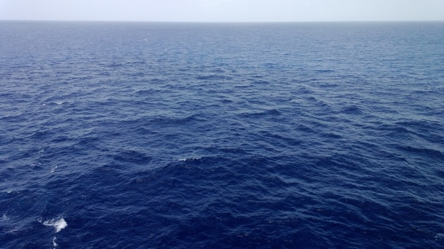 This was taken from the cruise ship as we spent our last day at sea heading back to Florida.