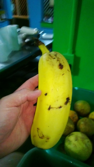 Two bananas which grew together.