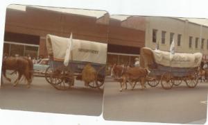 Wagon7