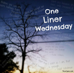 one-liner-wednesday